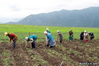 Image result for գյուղատնտեսություն